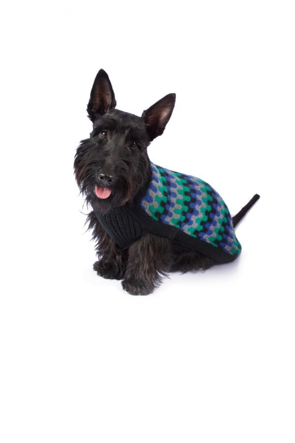 Night Waves alpaca dog sweater