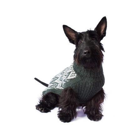 Andean Peaks Green alpaca dog sweater