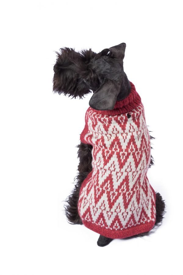 """<span style=""""font-weight: 400;"""">Designed for elegance, this uniquely ethnic sweater comes to life in dynamic geometrical shapes. Evoking the distant Andean mountains, this gorgeous </span>Andean Peaks Red alpaca dog sweater <span style=""""font-weight: 400;"""">is hand-loomed in Peru.</span> <ul> <li aria-level=""""1"""">Handcrafted from alpaca fiber blends</li> <li style=""""font-weight: 400;"""" aria-level=""""1""""><span style=""""font-weight: 400;"""">Soft</span><span style=""""font-weight: 400;""""> and warm to the touch</span></li> <li style=""""font-weight: 400;"""" aria-level=""""1""""><span style=""""font-weight: 400;"""">Not itchy & hypoallergenic</span></li> <li><span style=""""font-weight: 400;"""">Leash opening</span></li> </ul> - Model Coco is a Scottish Terrier size M - Model Gloria is a Mini Dachshund size XS This garment has been designed thinking on the well being of your pet. [fusion_button link=""""https://alqowasi.com/wp-content/uploads/2021/03/Sizing-guide-sweater-dresses.png"""" text_transform=""""none"""" title="""""""" target=""""lightbox"""" link_attributes="""""""" alignment_medium="""""""" alignment_small="""""""" alignment="""""""" modal="""""""" hide_on_mobile=""""small-visibility,medium-visibility,large-visibility"""" sticky_display=""""normal,sticky"""" class=""""button-chart"""" id="""""""" color=""""default"""" button_gradient_top_color="""""""" button_gradient_bottom_color="""""""" button_gradient_top_color_hover="""""""" button_gradient_bottom_color_hover="""""""" accent_color="""""""" accent_hover_color="""""""" type="""""""" bevel_color="""""""" border_width="""""""" border_radius="""""""" border_color="""""""" border_hover_color="""""""" size=""""small"""" stretch=""""default"""" margin_top="""""""" margin_right="""""""" margin_bottom="""""""" margin_left="""""""" icon=""""fa-ruler fas"""" icon_position=""""left"""" icon_divider=""""no"""" animation_type="""""""" animation_direction=""""left"""" animation_speed=""""0.3"""" animation_offset=""""""""]Sizing Chart[/fusion_button]"""