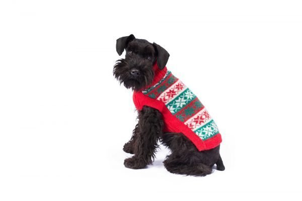 """<em><strong>We combine textile heritage and global trends with alpaca—a raw, sustainable, and luxurious fiber—to make our designs unique.</strong></em> Ho, Ho, Ho! Make their holiday magical with this cute and sublimely soft alpaca knit. As if from a Christmas tale, your little man will be the perfect host for everyone you hold near and dear! - Features ribbed turtleneck, leash opening - Model Coco is Scottish Terrier Size M - This garment has been designed thinking on the well being of your pet. [fusion_button link=""""https://alqowasi.com/wp-content/uploads/2021/03/Sizing-guide-sweater-dresses.png"""" text_transform=""""none"""" title="""""""" target=""""lightbox"""" link_attributes="""""""" alignment_medium="""""""" alignment_small="""""""" alignment="""""""" modal="""""""" hide_on_mobile=""""small-visibility,medium-visibility,large-visibility"""" sticky_display=""""normal,sticky"""" class=""""button-chart"""" id="""""""" color=""""default"""" button_gradient_top_color="""""""" button_gradient_bottom_color="""""""" button_gradient_top_color_hover="""""""" button_gradient_bottom_color_hover="""""""" accent_color="""""""" accent_hover_color="""""""" type="""""""" bevel_color="""""""" border_width="""""""" border_radius="""""""" border_color="""""""" border_hover_color="""""""" size=""""small"""" stretch=""""default"""" margin_top="""""""" margin_right="""""""" margin_bottom="""""""" margin_left="""""""" icon=""""fa-ruler fas"""" icon_position=""""left"""" icon_divider=""""no"""" animation_type="""""""" animation_direction=""""left"""" animation_speed=""""0.3"""" animation_offset=""""""""]Sizing Chart[/fusion_button]"""