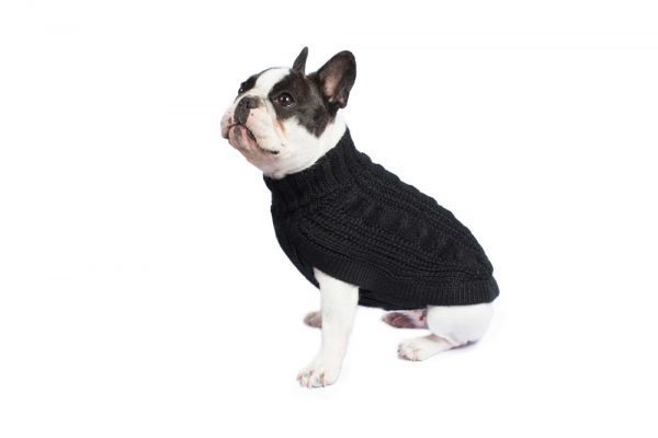 "<em><strong>We combine textile heritage and global trends with alpaca—a raw, sustainable, and luxurious fiber—to make our designs unique.</strong></em> Soft as a cloud in fluffy alpaca. This luxurious cable knit is the ultimate timeless staple for any dog's wardrobe. Features ribbed turtleneck, leash opening - Model Ramona is a French Bulldog 6mths size S This garment has been designed thinking on the well being of your pet. [fusion_button link=""https://alqowasi.com/wp-content/uploads/2021/03/Sizing-guide-sweater-dresses.png"" text_transform=""none"" title="""" target=""lightbox"" link_attributes="""" alignment_medium="""" alignment_small="""" alignment="""" modal="""" hide_on_mobile=""small-visibility,medium-visibility,large-visibility"" sticky_display=""normal,sticky"" class=""button-chart"" id="""" color=""default"" button_gradient_top_color="""" button_gradient_bottom_color="""" button_gradient_top_color_hover="""" button_gradient_bottom_color_hover="""" accent_color="""" accent_hover_color="""" type="""" bevel_color="""" border_width="""" border_radius="""" border_color="""" border_hover_color="""" size=""small"" stretch=""default"" margin_top="""" margin_right="""" margin_bottom="""" margin_left="""" icon=""fa-ruler fas"" icon_position=""left"" icon_divider=""no"" animation_type="""" animation_direction=""left"" animation_speed=""0.3"" animation_offset=""""]Sizing Chart[/fusion_button]"