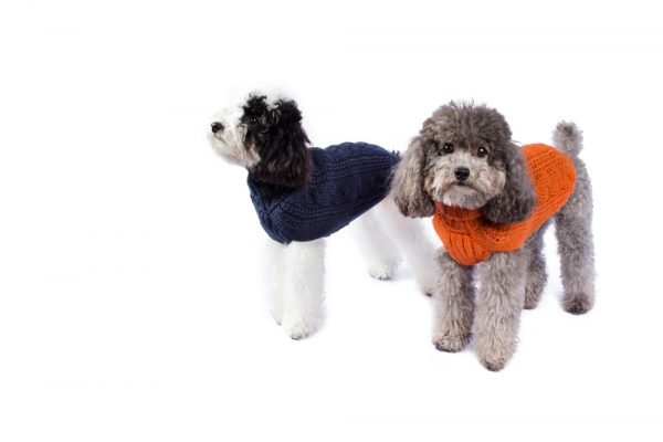 <em><strong>We combine textile heritage and global trends with alpaca—a raw, sustainable, and luxurious fiber—to make our designs unique.</strong></em>  Soft as a cloud in fluffy alpaca. This luxurious cable knit is the ultimate timeless staple for any dog's wardrobe.  Features ribbed turtleneck, leash opening  - Model Lola is a Miniature Poodle size XS  This garment has been designed thinking on the well being of your pet.