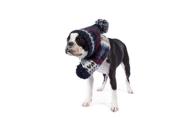 <em><strong>We combine textile heritage and global trends with alpaca—a raw, sustainable, and luxurious fibre—to make our designs unique.</strong></em> Keep your pup warm and stylish with Alqo Wasi´s Alpaca hat. It's made with super soft Alpaca fiber for maximum comfort anywhere your fashionable adventures take you. Beautifully made with great attention to detail. This toy has been designed thinking on the well being of your pet.