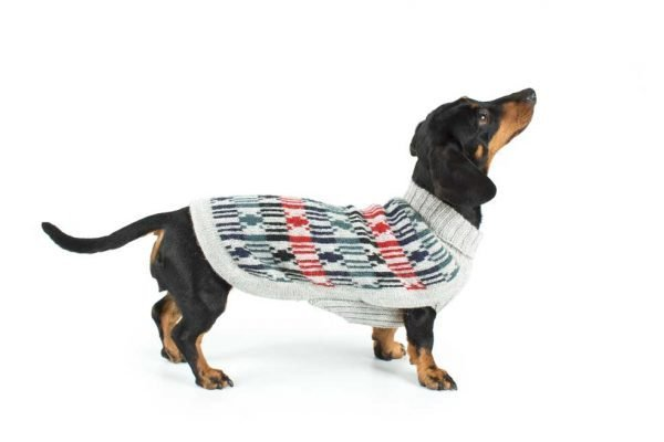 <em><strong>We combine textile heritage and global trends with alpaca—a raw, sustainable, and luxurious fibre—to make our designs unique.</strong></em>  Bundle up your pup with this alpaca blend knit dog sweater. Designed by the fashion authorities at Alqo Wasi, this pullover perfects the turtleneck for pooches. A trend setting style that everyone will love.  Features ribbed turtleneck, leash opening  - Model Benny is a Medium Poodle size L  This garment has been designed thinking on the well being of your pet.  <strong>Limited Stock!</strong>