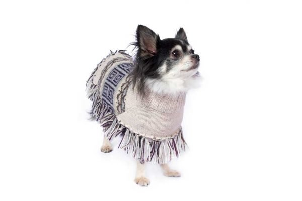 """Head-turning dog wears for the changing seasons, our knit poncho is a work of art in zigzag geometrics from a Pisac textile. Pisac alpaca dog poncho is handloomed of alpaca blend yarn in hues of earth and sky. <ul> <li aria-level=""""1"""">Handcrafted from alpaca fiber blends</li> <li style=""""font-weight: 400;"""" aria-level=""""1""""><span style=""""font-weight: 400;"""">Soft</span><span style=""""font-weight: 400;""""> and warm to the touch</span></li> <li style=""""font-weight: 400;"""" aria-level=""""1""""><span style=""""font-weight: 400;"""">Not itchy & hypoallergenic</span></li> <li><span style=""""font-weight: 400;"""">Leash opening</span></li> <li>Convenient belly knitted string</li> </ul> - Model Sally is a chihuahua size XXS - Model Pepper is a Boston Terrier Mix size S This garment has been designed thinking on the well-being of your pet. [fusion_button link=""""https://alqowasi.com/wp-content/uploads/2021/03/Sizing-guide-ponchos-2.png"""" text_transform=""""none"""" title="""""""" target=""""lightbox"""" link_attributes="""""""" alignment_medium="""""""" alignment_small="""""""" alignment="""""""" modal="""""""" hide_on_mobile=""""small-visibility,medium-visibility,large-visibility"""" sticky_display=""""normal,sticky"""" class=""""button-chart"""" id="""""""" color=""""default"""" button_gradient_top_color="""""""" button_gradient_bottom_color="""""""" button_gradient_top_color_hover="""""""" button_gradient_bottom_color_hover="""""""" accent_color="""""""" accent_hover_color="""""""" type="""""""" bevel_color="""""""" border_width="""""""" border_radius="""""""" border_color="""""""" border_hover_color="""""""" size=""""small"""" stretch=""""default"""" margin_top="""""""" margin_right="""""""" margin_bottom="""""""" margin_left="""""""" icon=""""fa-ruler fas"""" icon_position=""""left"""" icon_divider=""""no"""" animation_type="""""""" animation_direction=""""left"""" animation_speed=""""0.3"""" animation_offset=""""""""]Sizing Chart[/fusion_button]"""