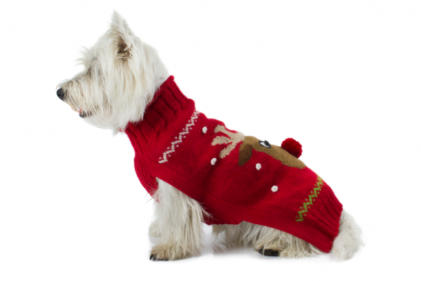 """Brighten up the Holidays with this soft and cozy sweater in alpaca blend. The intarsia-knit Rudolph sweater is perfect for the stylish canine. A pom-pom Red nose gives the extra touch to this truly fun and festive sweater. <ul> <li aria-level=""""1"""">Handcrafted from alpaca fiber blends</li> <li style=""""font-weight: 400;"""" aria-level=""""1""""><span style=""""font-weight: 400;"""">Soft</span><span style=""""font-weight: 400;""""> and warm to the touch</span></li> <li style=""""font-weight: 400;"""" aria-level=""""1""""><span style=""""font-weight: 400;"""">Not itchy & hypoallergenic</span></li> <li><span style=""""font-weight: 400;"""">Leash opening</span></li> </ul> - Model Paco is a Scottish Terrier size M This garment has been designed thinking on the well-being of your pet. [fusion_button link=""""https://alqowasi.com/wp-content/uploads/2021/03/Sizing-guide-sweater-dresses.png"""" text_transform=""""none"""" title="""""""" target=""""lightbox"""" link_attributes="""""""" alignment_medium="""""""" alignment_small="""""""" alignment="""""""" modal="""""""" hide_on_mobile=""""small-visibility,medium-visibility,large-visibility"""" sticky_display=""""normal,sticky"""" class=""""button-chart"""" id="""""""" color=""""default"""" button_gradient_top_color="""""""" button_gradient_bottom_color="""""""" button_gradient_top_color_hover="""""""" button_gradient_bottom_color_hover="""""""" accent_color="""""""" accent_hover_color="""""""" type="""""""" bevel_color="""""""" border_width="""""""" border_radius="""""""" border_color="""""""" border_hover_color="""""""" size=""""small"""" stretch=""""default"""" margin_top="""""""" margin_right="""""""" margin_bottom="""""""" margin_left="""""""" icon=""""fa-ruler fas"""" icon_position=""""left"""" icon_divider=""""no"""" animation_type="""""""" animation_direction=""""left"""" animation_speed=""""0.3"""" animation_offset=""""""""]Sizing Chart[/fusion_button]"""