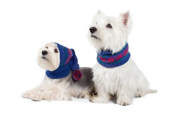 <em><strong>We combine textile heritage and global trends with alpaca—a raw, sustainable, and luxurious fibre—to make our designs unique.</strong></em> Ho, Ho, Ho!It is Christmas time! The paw-fect statement for us top fash-hounds this Holiday season! Soft and snuggly, our infinity blue scarf features festive snowflakes in red. This garment has been designed thinking on the well being of your pet.