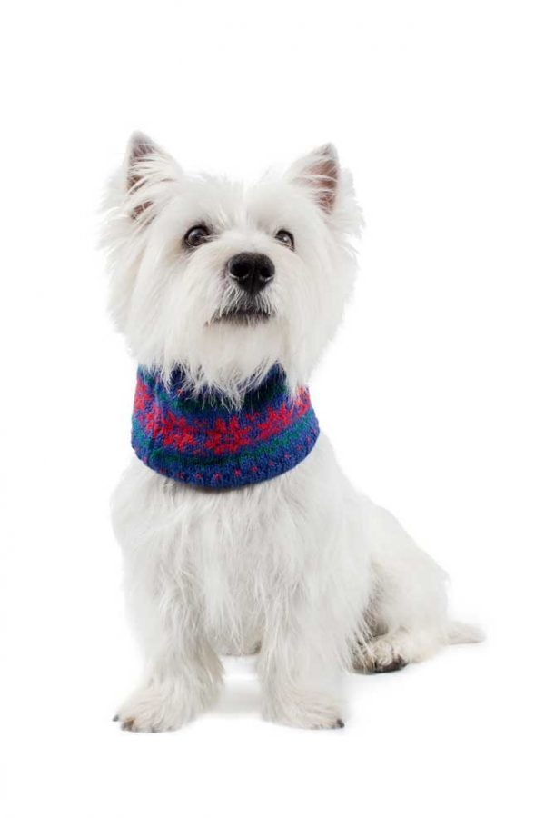 <em><strong>We combine textile heritage and global trends with alpaca—a raw, sustainable, and luxurious fibre—to make our designs unique.</strong></em> Ho, Ho, Ho! It is Christmas time! The paw-fect statement for us top fash-hounds this Holiday season! Soft and snuggly, our infinity blue scarf features festive snowflakes in red. This garment has been designed thinking on the well being of your pet.