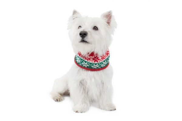 <em><strong>We combine textile heritage and global trends with alpaca—a raw, sustainable, and luxurious fibre—to make our designs unique.</strong></em> Ho, Ho, Ho!It is Christmas time! The paw-fect statement for us top fash-hounds this Holiday season! Soft and snuggly, our alpaca blend infinity scarf features festive snowflakes. This garment has been designed thinking on the well being of your pet.