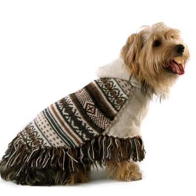 Feather Bliss Alpaca Dog Poncho
