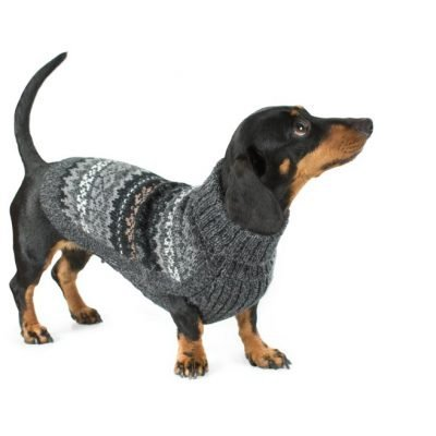 Dark Fall Medley Alpaca Dog Sweater