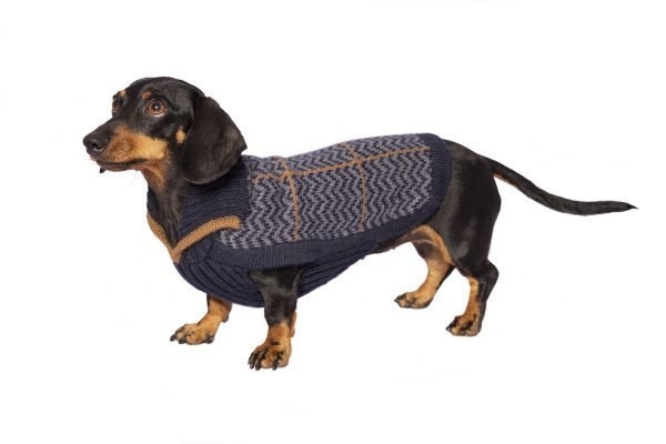 "<span style=""font-weight: 400;"">Preppy style is all about a classic, clean, and collegiate appearance. If you're the kind of pup that prefers to look classy rather than rugged, the Preppy Blue alpaca dog sweater could be right for you!</span> <span style=""font-weight: 400;"">The V-neck Alpaca sweater is distinguished by dashed line motifs in camel, creating a dynamic and eye-catching aesthetic for your pet´s casual looks.</span> <ul> <li aria-level=""1"">Handcrafted from alpaca fiber blends</li> <li style=""font-weight: 400;"" aria-level=""1""><span style=""font-weight: 400;"">Soft</span><span style=""font-weight: 400;""> and warm to the touch</span></li> <li style=""font-weight: 400;"" aria-level=""1""><span style=""font-weight: 400;"">Not itchy & hypoallergenic</span></li> <li><span style=""font-weight: 400;"">Leash opening</span></li> </ul> - Model Kira is a Miniature Poodle Puppy Size XXS - Model Jagger is a Miniature Bull Terrier Size L This garment has been designed thinking on the well-being of your pet. [fusion_button link=""https://alqowasi.com/wp-content/uploads/2021/03/Sizing-guide-sweater-dresses.png"" text_transform=""none"" title="""" target=""lightbox"" link_attributes="""" alignment_medium="""" alignment_small="""" alignment="""" modal="""" hide_on_mobile=""small-visibility,medium-visibility,large-visibility"" sticky_display=""normal,sticky"" class=""button-chart"" id="""" color=""default"" button_gradient_top_color="""" button_gradient_bottom_color="""" button_gradient_top_color_hover="""" button_gradient_bottom_color_hover="""" accent_color="""" accent_hover_color="""" type="""" bevel_color="""" border_width="""" border_radius="""" border_color="""" border_hover_color="""" size=""small"" stretch=""default"" margin_top="""" margin_right="""" margin_bottom="""" margin_left="""" icon=""fa-ruler fas"" icon_position=""left"" icon_divider=""no"" animation_type="""" animation_direction=""left"" animation_speed=""0.3"" animation_offset=""""]Sizing Chart[/fusion_button]"