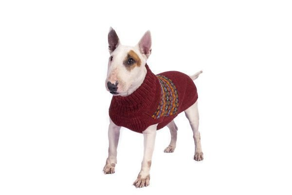 <em><strong>We combine textile heritage and global trends with alpaca—a raw, sustainable, and luxurious fiber—to make our designs unique.</strong></em>  Our adorable art knit, banded in cheery Apres Ski is sure to become your pup´s favourite!  Knit of soft, substantial alpaca blend, this unique sweater comes to life from whimsical dotted bands to banded pinstripes of color.  Features ribbed turtleneck, leash opening  - Model Jagger is aMiniature Bull Terrier Size LG  - Model Gloria is a Miniature Dachshund size XS  - Model Coby is a Corgi size L  This garment has been designed thinking on the well being of your pet.