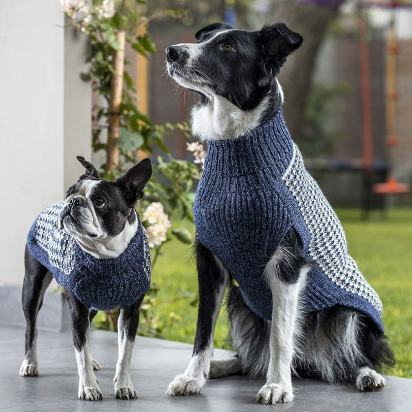 "<em><strong>We combine textile heritage and global trends with alpaca—a raw, sustainable, and luxurious fibre—to make our designs unique.</strong></em> Unbelievably light and lofty, this luxe and versatile sweater floats over the body with effortless grace. Made of the softest alpaca blend yarn, this whimsical jumper will keep your dog warm and classy at the same time. Features ribbed turtleneck, leash opening - Model Ramona is a French Bulldog 6 months size S - Model Cindy is a Border Collie size XL - Model Betty is a Boston Terrier size S - Model Gloria is a Mini Dachshund size XS This garment has been designed thinking on the well being of your pet. [fusion_button link=""https://alqowasi.com/wp-content/uploads/2021/03/Sizing-guide-sweater-dresses.png"" text_transform=""none"" title="""" target=""lightbox"" link_attributes="""" alignment_medium="""" alignment_small="""" alignment="""" modal="""" hide_on_mobile=""small-visibility,medium-visibility,large-visibility"" sticky_display=""normal,sticky"" class=""button-chart"" id="""" color=""default"" button_gradient_top_color="""" button_gradient_bottom_color="""" button_gradient_top_color_hover="""" button_gradient_bottom_color_hover="""" accent_color="""" accent_hover_color="""" type="""" bevel_color="""" border_width="""" border_radius="""" border_color="""" border_hover_color="""" size=""small"" stretch=""default"" margin_top="""" margin_right="""" margin_bottom="""" margin_left="""" icon=""fa-ruler fas"" icon_position=""left"" icon_divider=""no"" animation_type="""" animation_direction=""left"" animation_speed=""0.3"" animation_offset=""""]Sizing Chart[/fusion_button]"