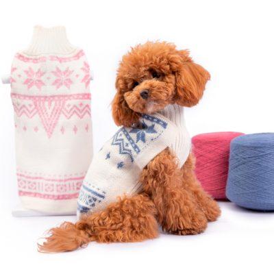 Snowflake Light Blue alpaca dog sweater