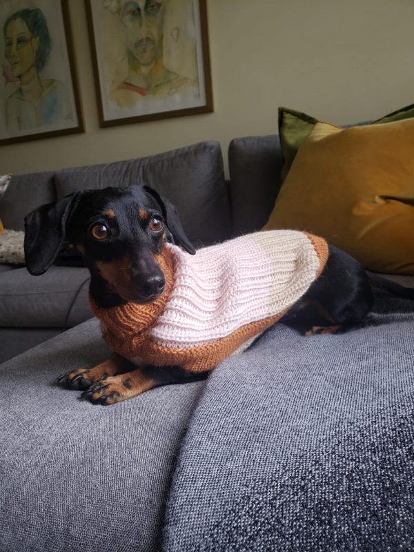 """Our Soft Dreams alpaca dog sweater is the perfect knitted gift you have been searching for. <span style=""""font-weight: 400;"""">This vintage sweater will bring many sweet stories with your furry friend.</span> <ul> <li aria-level=""""1"""">Handcrafted from alpaca fiber blends</li> <li style=""""font-weight: 400;"""" aria-level=""""1""""><span style=""""font-weight: 400;"""">Soft</span><span style=""""font-weight: 400;""""> and warm to the touch</span></li> <li style=""""font-weight: 400;"""" aria-level=""""1""""><span style=""""font-weight: 400;"""">Not itchy & hypoallergenic</span></li> <li><span style=""""font-weight: 400;"""">Leash opening</span></li> </ul> This garment has been designed thinking on the well-being of your pet. [fusion_button link=""""https://alqowasi.com/wp-content/uploads/2021/03/Sizing-guide-sweater-dresses.png"""" text_transform=""""none"""" title="""""""" target=""""lightbox"""" link_attributes="""""""" alignment_medium="""""""" alignment_small="""""""" alignment="""""""" modal="""""""" hide_on_mobile=""""small-visibility,medium-visibility,large-visibility"""" sticky_display=""""normal,sticky"""" class=""""button-chart"""" id="""""""" color=""""default"""" button_gradient_top_color="""""""" button_gradient_bottom_color="""""""" button_gradient_top_color_hover="""""""" button_gradient_bottom_color_hover="""""""" accent_color="""""""" accent_hover_color="""""""" type="""""""" bevel_color="""""""" border_width="""""""" border_radius="""""""" border_color="""""""" border_hover_color="""""""" size=""""small"""" stretch=""""default"""" margin_top="""""""" margin_right="""""""" margin_bottom="""""""" margin_left="""""""" icon=""""fa-ruler fas"""" icon_position=""""left"""" icon_divider=""""no"""" animation_type="""""""" animation_direction=""""left"""" animation_speed=""""0.3"""" animation_offset=""""""""]Sizing Chart[/fusion_button]"""