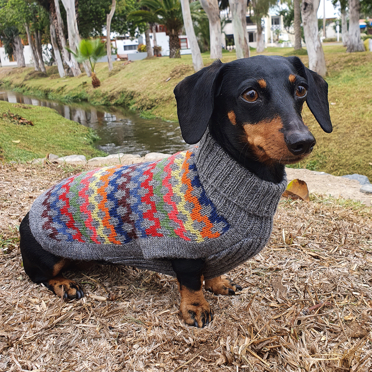 Crossroads-Collection 2020: Alqo Wasi alpaca sweater for dogs