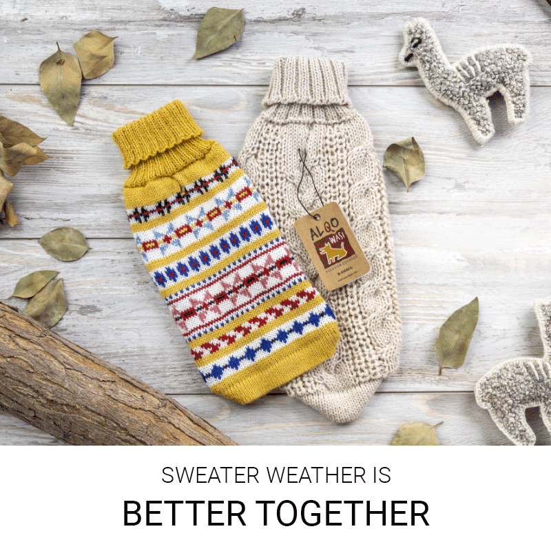Banner home Alqo Wasi: Sweater is better together mobile