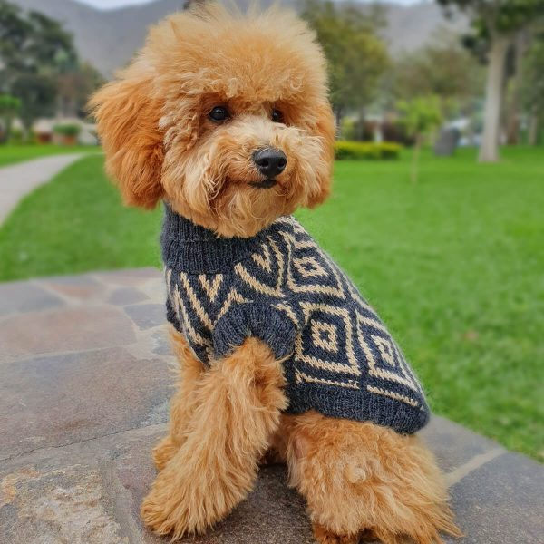 Rhombus-Collection 2020: Alqo Wasi alpaca sweater for dogs