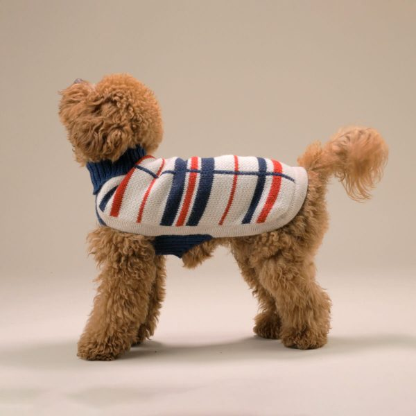 """Unbelievably light and lofty, this luxe and versatile sweater floats over the body with effortless grace. This whimsical jumper will keep your dog warm and classy at the same time. <ul> <li aria-level=""""1"""">Handcrafted from alpaca fiber blends</li> <li style=""""font-weight: 400;"""" aria-level=""""1""""><span style=""""font-weight: 400;"""">Soft</span><span style=""""font-weight: 400;""""> and warm to the touch</span></li> <li style=""""font-weight: 400;"""" aria-level=""""1""""><span style=""""font-weight: 400;"""">Not itchy & hypoallergenic</span></li> <li><span style=""""font-weight: 400;"""">Leash opening</span></li> </ul> This garment has been designed thinking on the well-being of your pet. [fusion_button link=""""https://alqowasi.com/wp-content/uploads/2021/03/Sizing-guide-sweater-dresses.png"""" text_transform=""""none"""" title="""""""" target=""""lightbox"""" link_attributes="""""""" alignment_medium="""""""" alignment_small="""""""" alignment="""""""" modal="""""""" hide_on_mobile=""""small-visibility,medium-visibility,large-visibility"""" sticky_display=""""normal,sticky"""" class=""""button-chart"""" id="""""""" color=""""default"""" button_gradient_top_color="""""""" button_gradient_bottom_color="""""""" button_gradient_top_color_hover="""""""" button_gradient_bottom_color_hover="""""""" accent_color="""""""" accent_hover_color="""""""" type="""""""" bevel_color="""""""" border_width="""""""" border_radius="""""""" border_color="""""""" border_hover_color="""""""" size=""""small"""" stretch=""""default"""" margin_top="""""""" margin_right="""""""" margin_bottom="""""""" margin_left="""""""" icon=""""fa-ruler fas"""" icon_position=""""left"""" icon_divider=""""no"""" animation_type="""""""" animation_direction=""""left"""" animation_speed=""""0.3"""" animation_offset=""""""""]Sizing Chart[/fusion_button]  <strong>Please note that orders that placed during this week including PRE-ORDERED garments will be shipped from September 30th to October 11th, 2021. As always, we can assure you that our unique collection is worth the wait. Once your order is ready to ship, delivery time ranges from 3-5 business days worldwide with DHL.</strong>"""