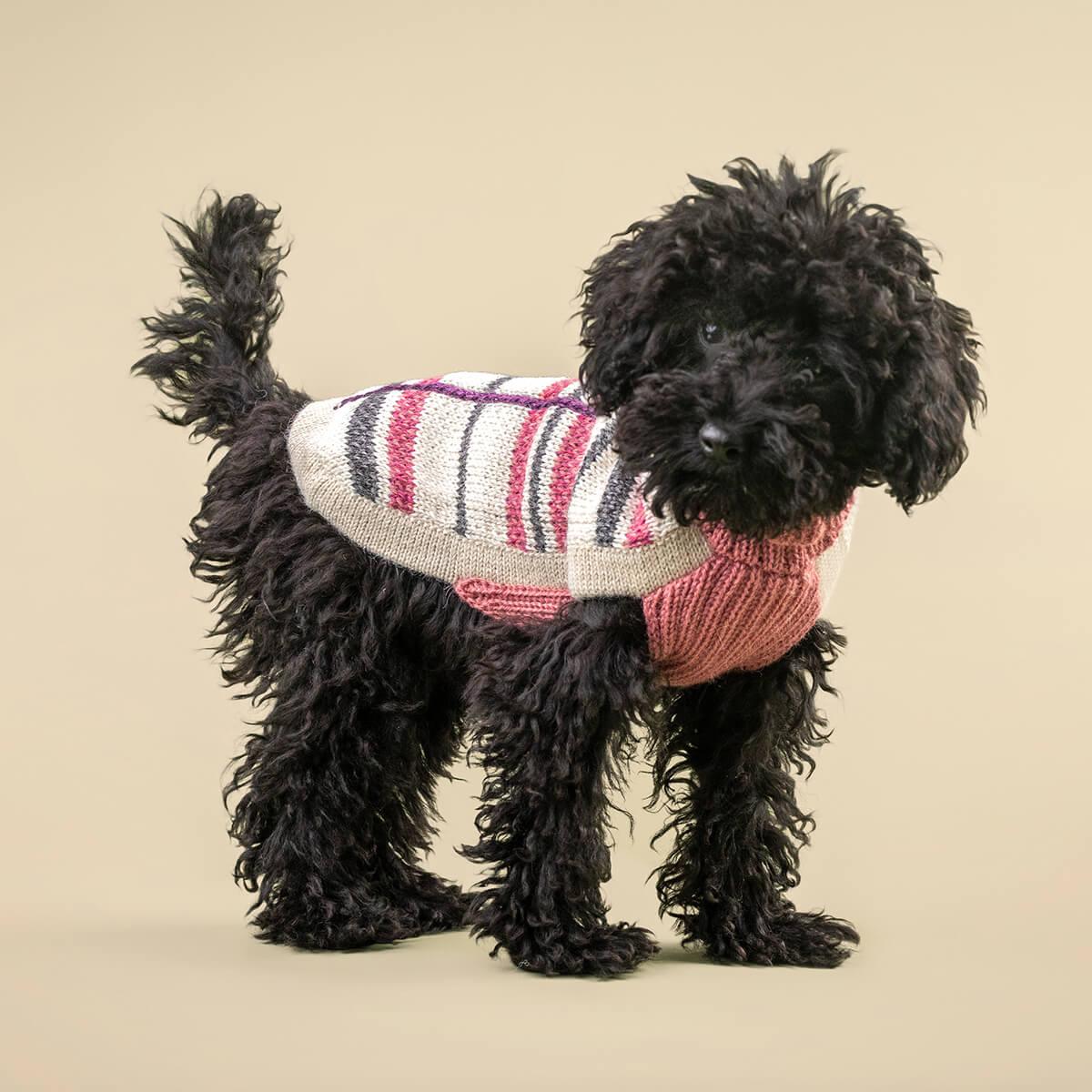 Plaid Rose Pink Alpaca Dog Sweater