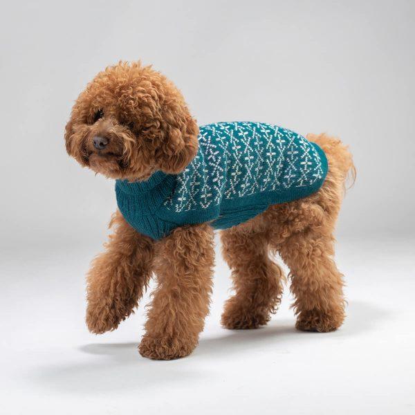 Signs Alpaca Dog Sweater