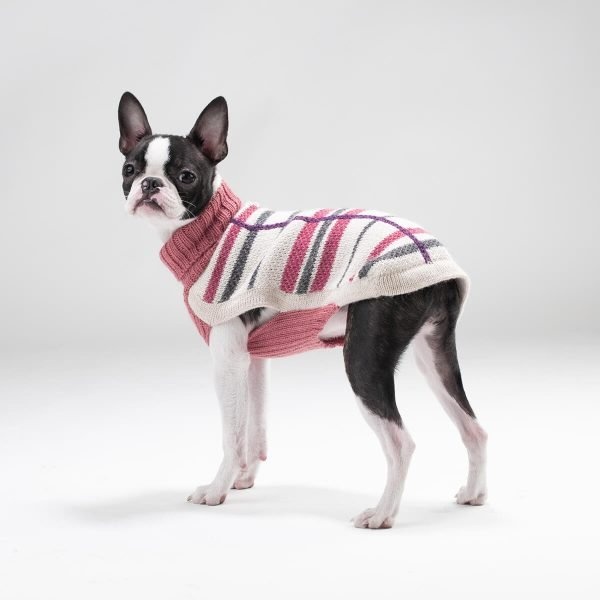 """Unbelievably light and lofty, this luxe and versatile sweater floats over the body with effortless grace. This whimsical jumper will keep your dog warm and classy at the same time. <ul> <li aria-level=""""1"""">Handcrafted from alpaca fiber blends</li> <li style=""""font-weight: 400;"""" aria-level=""""1""""><span style=""""font-weight: 400;"""">Soft</span><span style=""""font-weight: 400;""""> and warm to the touch</span></li> <li style=""""font-weight: 400;"""" aria-level=""""1""""><span style=""""font-weight: 400;"""">Not itchy & hypoallergenic</span></li> <li><span style=""""font-weight: 400;"""">Leash opening</span></li> </ul> – Zelda is a Boston Terrier (6 months) size XXSmall – Model Yana is a Toy Poodle Size XXS This garment has been designed thinking on the well-being of your pet. [fusion_button link=""""https://alqowasi.com/wp-content/uploads/2021/03/Sizing-guide-sweater-dresses.png"""" text_transform=""""none"""" title="""""""" target=""""lightbox"""" link_attributes="""""""" alignment_medium="""""""" alignment_small="""""""" alignment="""""""" modal="""""""" hide_on_mobile=""""small-visibility,medium-visibility,large-visibility"""" sticky_display=""""normal,sticky"""" class=""""button-chart"""" id="""""""" color=""""default"""" button_gradient_top_color="""""""" button_gradient_bottom_color="""""""" button_gradient_top_color_hover="""""""" button_gradient_bottom_color_hover="""""""" accent_color="""""""" accent_hover_color="""""""" type="""""""" bevel_color="""""""" border_width="""""""" border_radius="""""""" border_color="""""""" border_hover_color="""""""" size=""""small"""" stretch=""""default"""" margin_top="""""""" margin_right="""""""" margin_bottom="""""""" margin_left="""""""" icon=""""fa-ruler fas"""" icon_position=""""left"""" icon_divider=""""no"""" animation_type="""""""" animation_direction=""""left"""" animation_speed=""""0.3"""" animation_offset=""""""""]Sizing Chart[/fusion_button]  <strong>Please note that orders that placed during this week including PRE-ORDERED garments will be shipped from September 30th to October 11th, 2021. As always, we can assure you that our unique collection is worth the wait. Once your order is ready to ship, delivery time ranges from 3-5 business days worldwide with DHL.</strong>"""
