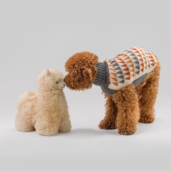 """<span style=""""font-weight: 400;"""">Indulge your favorite furry friend in comfort and surround yourself with pieces that are soft to the touch and enchanting to wear.</span> <ul> <li aria-level=""""1"""">Handcrafted from alpaca fiber blends</li> <li style=""""font-weight: 400;"""" aria-level=""""1""""><span style=""""font-weight: 400;"""">Soft</span><span style=""""font-weight: 400;""""> and warm to the touch</span></li> <li style=""""font-weight: 400;"""" aria-level=""""1""""><span style=""""font-weight: 400;"""">Not itchy & hypoallergenic</span></li> <li><span style=""""font-weight: 400;"""">Leash opening</span></li> </ul> <p class=""""p1"""">– Churro is a Poodle size Small – Model Yana is a Toy Poodle Size XXSmall</p> This garment has been designed thinking on the well-being of your pet. [fusion_button link=""""https://alqowasi.com/wp-content/uploads/2021/03/Sizing-guide-sweater-dresses.png"""" text_transform=""""none"""" title="""""""" target=""""lightbox"""" link_attributes="""""""" alignment_medium="""""""" alignment_small="""""""" alignment="""""""" modal="""""""" hide_on_mobile=""""small-visibility,medium-visibility,large-visibility"""" sticky_display=""""normal,sticky"""" class=""""button-chart"""" id="""""""" color=""""default"""" button_gradient_top_color="""""""" button_gradient_bottom_color="""""""" button_gradient_top_color_hover="""""""" button_gradient_bottom_color_hover="""""""" accent_color="""""""" accent_hover_color="""""""" type="""""""" bevel_color="""""""" border_width="""""""" border_radius="""""""" border_color="""""""" border_hover_color="""""""" size=""""small"""" stretch=""""default"""" margin_top="""""""" margin_right="""""""" margin_bottom="""""""" margin_left="""""""" icon=""""fa-ruler fas"""" icon_position=""""left"""" icon_divider=""""no"""" animation_type="""""""" animation_direction=""""left"""" animation_speed=""""0.3"""" animation_offset=""""""""]Sizing Chart[/fusion_button]  <strong>Please note that orders that placed during this week including PRE-ORDERED garments will be shipped from September 27th to October 4th, 2021. As always, we can assure you that our unique collection is worth the wait. Once your order is ready to ship, delivery time ranges from 3-5 business days worldwide with DHL.</strong>"""