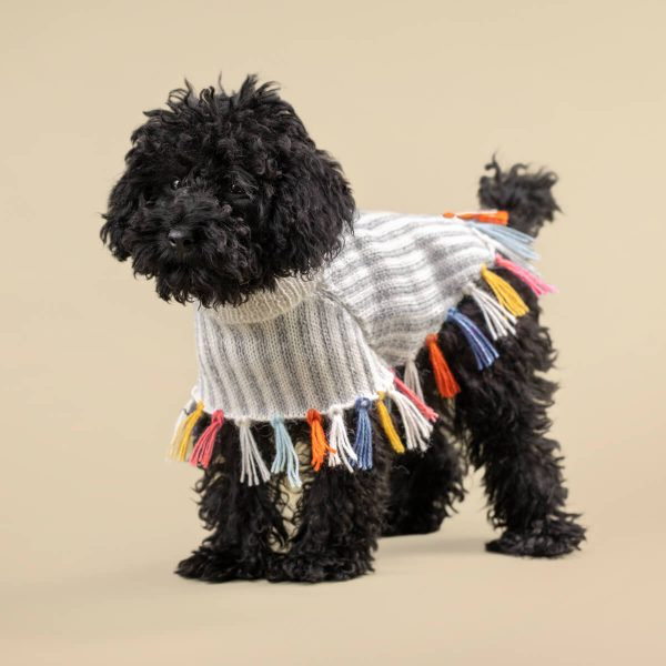 """<span style=""""font-weight: 400;"""">It's all in the details. Our Rainbow poncho </span><span style=""""font-weight: 400;"""">takes care of elevating your pup´s look while keeping him warm.</span> <ul> <li aria-level=""""1"""">Handcrafted from alpaca fiber blends</li> <li style=""""font-weight: 400;"""" aria-level=""""1""""><span style=""""font-weight: 400;"""">Soft</span><span style=""""font-weight: 400;""""> and warm to the touch</span></li> <li style=""""font-weight: 400;"""" aria-level=""""1""""><span style=""""font-weight: 400;"""">Not itchy & hypoallergenic</span></li> <li>Convenient belly knitted string</li> </ul> - Model Yana is a Toy Poodle size XXSmall This garment has been designed thinking on the well being of your pet. [fusion_button link=""""https://alqowasi.com/wp-content/uploads/2021/09/Sizing-guide-ponchos-2021.jpg"""" text_transform=""""none"""" title="""""""" target=""""lightbox"""" link_attributes="""""""" alignment_medium="""""""" alignment_small="""""""" alignment="""""""" modal="""""""" hide_on_mobile=""""small-visibility,medium-visibility,large-visibility"""" sticky_display=""""normal,sticky"""" class=""""button-chart"""" id="""""""" color=""""default"""" button_gradient_top_color="""""""" button_gradient_bottom_color="""""""" button_gradient_top_color_hover="""""""" button_gradient_bottom_color_hover="""""""" accent_color="""""""" accent_hover_color="""""""" type="""""""" bevel_color="""""""" border_width="""""""" border_radius="""""""" border_color="""""""" border_hover_color="""""""" size=""""small"""" stretch=""""default"""" margin_top="""""""" margin_right="""""""" margin_bottom="""""""" margin_left="""""""" icon=""""fa-ruler fas"""" icon_position=""""left"""" icon_divider=""""no"""" animation_type="""""""" animation_direction=""""left"""" animation_speed=""""0.3"""" animation_offset=""""""""]Sizing Chart[/fusion_button]  <strong>Note: </strong>Hot Seller! We had to make a slight variation in the color of the lilac fringe that is being replaced by a coral hue in this new batch. Product photos have been updated. <strong>Please note that orders that placed during this week including PRE-ORDERED garments will be shipped from October 29th to November 8th, 2021. As always, we can assure you that our unique collection is worth the"""